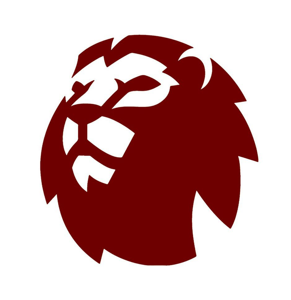 Roaring Lions Financial | Philam Life